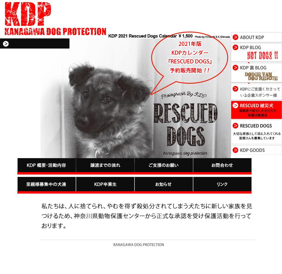 KDP - 神奈川ドッグプロテクションは、人に捨てられ、やむを得ず殺処分されてしまう犬たちに新しい家族を見つけるため、神奈川県動物保護センターから正式な承認を受け保護活動を行っております。